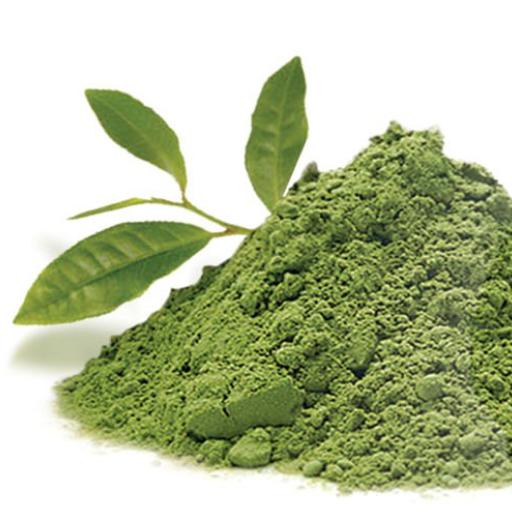 eska group wellness w1228-greenteabodyscrub