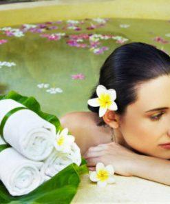 eska group batam eska wellness spa massage & salon 4greentea