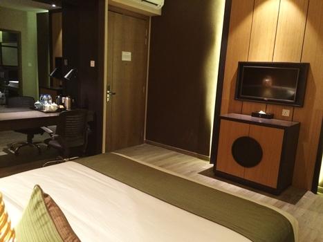 eska hotel deluxe room 02